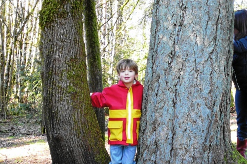 boy and trees